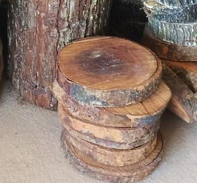 Batang pokok
