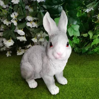 Rabbit / arnab
